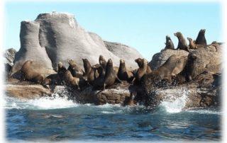 Coronado Isle